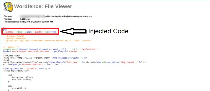 Injected code in WordPress