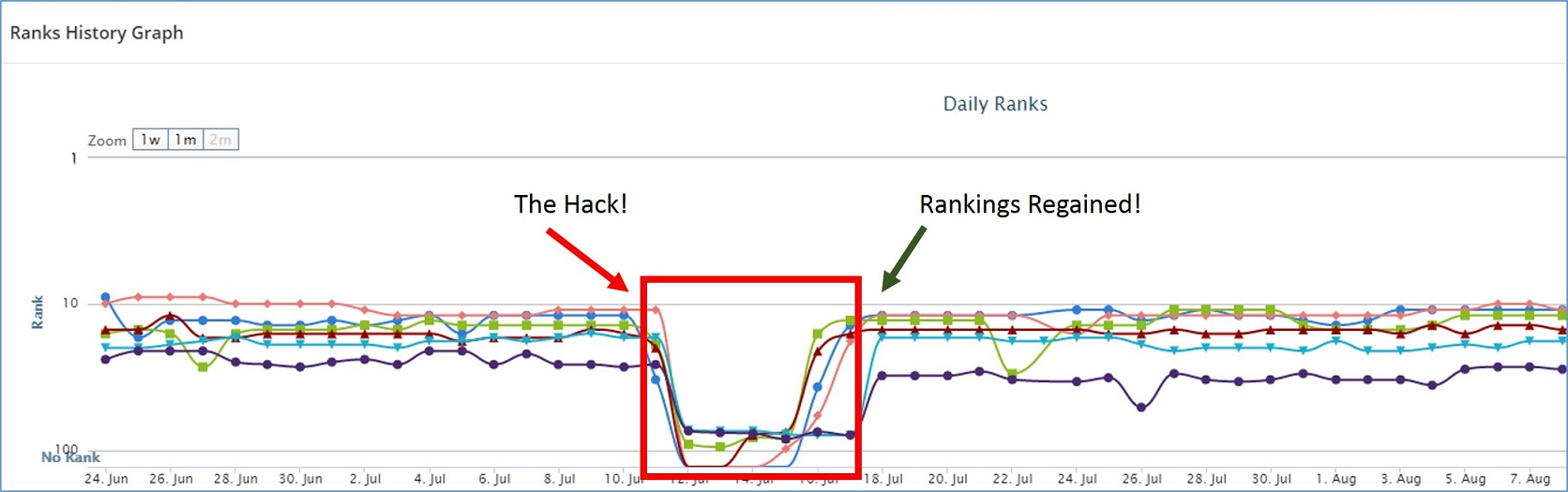 Organic SEO rankings returned